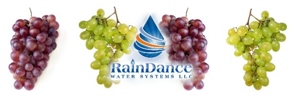 Water Filters for Wineries, Vineyards, and Grapes